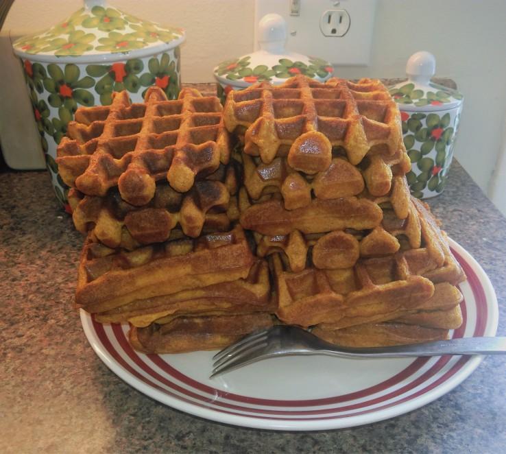 Waffle Tuesday 1a